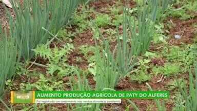 Cresce venda de produtos agrícolas em Paty do Alferes durante a pandemia - Produtores rurais precisaram aumentar a produção de verduras, frutas e hortaliças para atender ao aumento da procura.