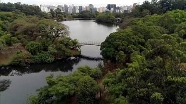 Antena Paulista - Edição de 14/06/2020 - Saiba como está o Parque do Ibirapuera quase três meses depois que ele foi fechado por causa do coronavírus. Aplicativo ajuda pequenos produtores de Botucatu a vender seus produtos em época de pandemia. Confira dicas de limpeza para animais de estimação.