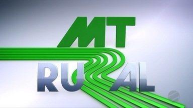 Assista o 3º bloco do MT Rural deste domingo - 14/06/20 - Assista o 3º bloco do MT Rural deste domingo - 14/06/20