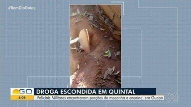 PM encontra droga enterrada em quintal de casa em Guapó - Eles notaram terra fofa e folhas mexidas e, ao verificar, encontraram as substâncias.