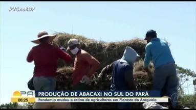 Pandemia mudou a rotina de agricultores em Floresta do Araguaia - Baixa foi motivada pela pandemia.