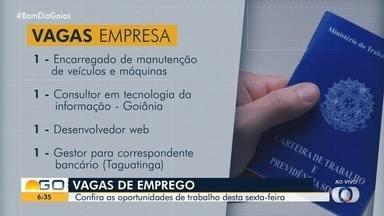 Confira vagas de emprego em Goiás - Há oportunidades para mecânicos e desenvolvedores de web.