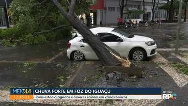 Chuva forte em Foz do Iguaçu - Ruas ficaram alagadas e árvores caíram em vários bairros