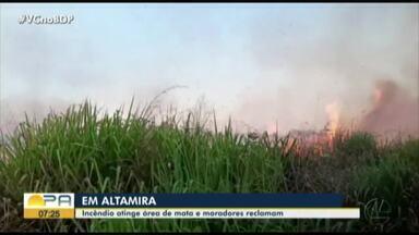 Incêndio atinge área de mata na zona urbana de Altamira - A fumaça se alastrou e invadiu residências vizinhas ao terreno.
