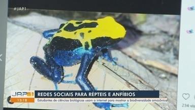 Estudantes de biologia usam as redes sociais para mostrar biodiversidade da Amazônia - Estudantes de biologia usam as redes sociais para mostrar biodiversidade da Amazônia