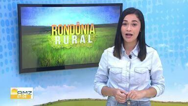 Veja os destaques do Rondônia Rural deste domingo, 05 - Thais Gomes conta quais são os principais destaques.
