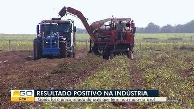 Indústria goiana apresenta crescimento em maio - Apesar da crise causada pela pandemia, setor tem se mantido estável.