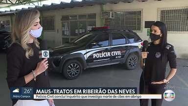 Casal é indiciado por maus-tratos de animais em Ribeirão das Neves - Polícia Civil concluiu o inquérito que investigou a morte de dezenas de cachorros em abrigo.