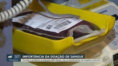 Estoque de sangue com RH negativo está em situação crítica em SP - Reportagem mostra a importância da doação para o sistema de saúde.
