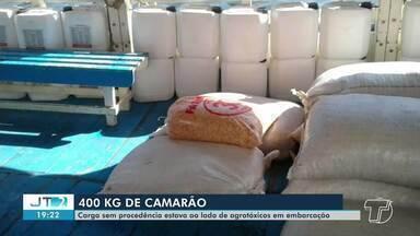Carga de 400kg de camarão sem procedência são apreendidos no porto de Santarém - Material alimentício estava mau acondicionada e ao lado de recipientes com agrotóxico.