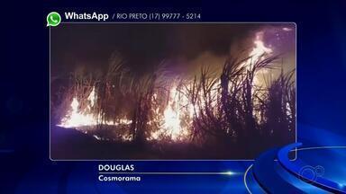 Incêndios atingem áreas de canavial e pastagem na região noroeste paulista - Incêndios atingem áreas de canavial e pastagem na região noroeste paulista nesta quinta-feira (16) e sexta-feira (17).
