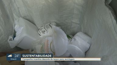 Associação faz campanha de reciclagem de isopor em Ribeirão Preto, SP - Por causa da pandemia, o acúmulo de embalagens do material aumentou.