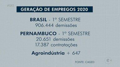 Cenário de desemprego começa a mudar em municípios do Sertão pernambucano - Dados do cadastro de empregados e desempregados, Caged, mostram que o cenário começa a mudar em Petrolina, Salgueiro e Araripina.