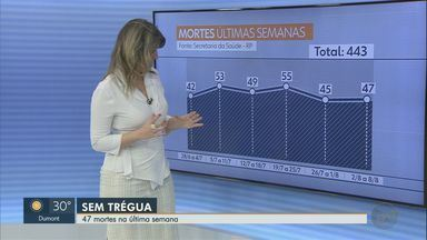 Veja números de mortes e internações por Covid-19 em Ribeirão Preto, SP - Hospital das Clínicas está com 100% de ocupação em enfermarias. Na última semana, 47 moradores da cidade morreram por complicações da doença.