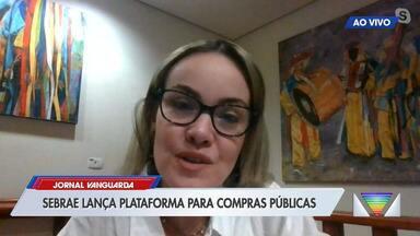 Sebrae lança plataforma para ajudar o pequeno empreendedor durante a pandemia - Ideia é que eles saibam de licitações e concorrências públicas