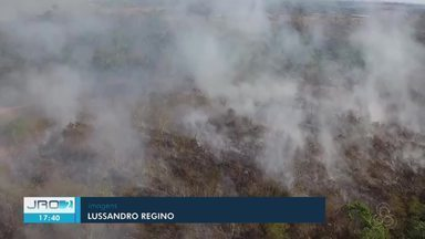 Mais de 500 focos de incêndios são registrados e Sedam alerta para proibição de queimadas - Focos foram registrados na primeira semana de agosto
