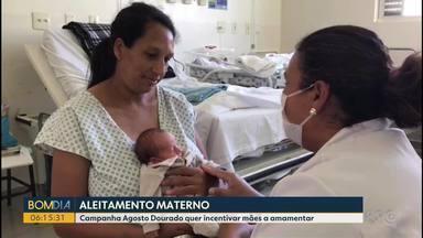 Aleitamento materno é tema de campanha - Campanha Agosto Dourado quer incentivar mães a amamentar.