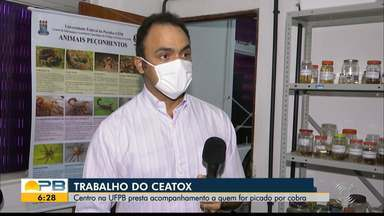Aumenta número de cobras encontradas em zona urbana, em João Pessoa - Ceatox acompanha quem for picado