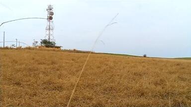 Professor da Unesp avalia a quantidade ideal de chuva para a região noroeste paulista - Professor da Unesp avalia a quantidade ideal de chuva para a região noroeste paulista.