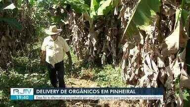 Produtores rurais realizam delivery de cestas orgânicas durante a pandemia em Pinheiral - Trabalhadores encontraram uma reinvenção do negócio durante o isolamento social, para poder facilitar a compra dos clientes.