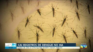 Casos de dengue, zika e chikungunya caem no Maranhão - Para que os números se mantenham em queda, é preciso que a população não se descuide de combater o mosquito Aedes Aegypti.