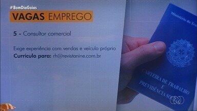 Confira vagas de emprego em Goiás - Há oportunidades para consultores comerciais, técnicos em segurança do trabalho, entre outros.