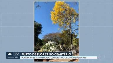 A polícia investiga o sumiço de flores em cemitério - Família denunciou o furto de 20 coroas de flores do túmulo de uma mulher de 89 anos que foi vítima da covid-19.