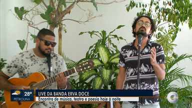 Banda Erva Doce se apresenta em live neste sábado - A banda apresenta músicas autorais e sucessos da MPB