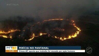 Perícia conclui que incêndio em reserva do Pantanal foi causada por ação humana - Perícia conclui que incêndio em reserva do Pantanal foi causada por ação humana.