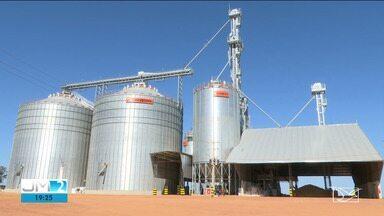 Preço da soja no mercado externo eleva exportações - Saiba mais informações com o repórter Gil Santos.