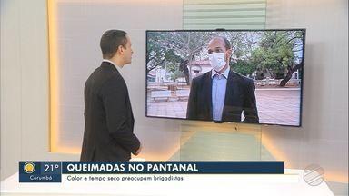 Queimadas no Pantanal: Calor e tempo seco preocupam brigadistas - Queimadas no Pantanal: Calor e tempo seco preocupam brigadistas