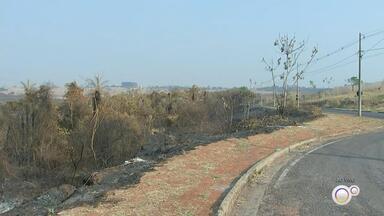 Incêndios atingem áreas de pastagem e de proteção ambiental na região noroeste paulista - Incêndios atingem áreas de pastagem e de proteção ambiental na região noroeste paulista.
