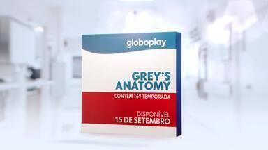 Grey's Anatomy é o melhor remédio - Globoplay adverte: Grey's Anatomy é o melhor remédio.
