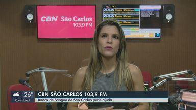 Fogo na rotatória do Cristo em São Carlos destrói 25 mil metros quadrados - Veja as informações com Michelle Jardim, da CBN.