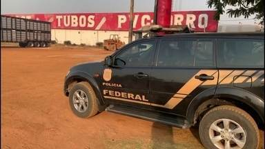 PF investiga fraudes no Ibama para liberar uso de terra protegida na Amazônia - Fraudadores tinham acesso ao sistema, anulavam multas e liberavam a exploração de áreas embargadas na Amazônia.