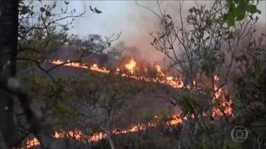 Queimadas se espalham em áreas de preservação ambiental no Tocantins - Brigadistas e bombeiros tentam combater incêndios no estado.