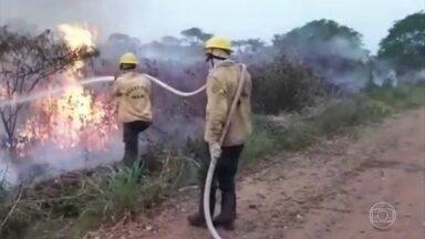 Governo anuncia R$ 3,8 milhões para custear ações de combate aos incêndios em MS - O fogo atinge grandes áreas no Pantanal e Cerrado.