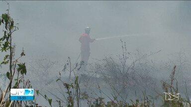 Aumenta o número de queimadas na Região dos Cocais - O repórter Adaílton Borba tem mais informações sobre as queimadas.