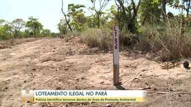 Policia identifica loteamentos ilegais no Pará - Lotes dentro de área de proteção ambiental eram anunciados na internet.