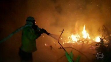 Quarenta agentes da Força Nacional chegam em MT para ajudar no combate às queimadas - Já em Mato Grosso do Sul, o fogo chegou a uma área considerada Patrimônio Natural da Humanidade.