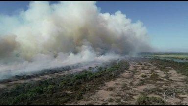 Senado reúne número mínimo de assinaturas para CPI sobre queimadas e desmonte ambiental - Comissão depende ainda de autorização do presidente do Senado.