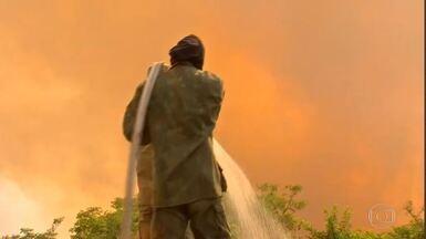 No Pantanal, bombeiros lutam para trabalhar em uma área gigantesca - São poucos profissionais para cobrir os muitos focos de incêndio na região.