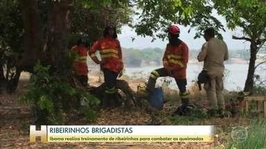 Ibama realiza treinamento de ribeirinhos para combater as queimadas - Segundo o INPE, já são 18.646 quilômetros quadrados de queimadas no Pantanal em 2020.