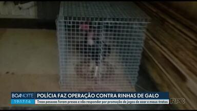 Treze pessoas são presas por suspeita de promover rinhas de galo - Elas vão responder por associação criminosa, promoção de jogos de azar e maus-tratos.