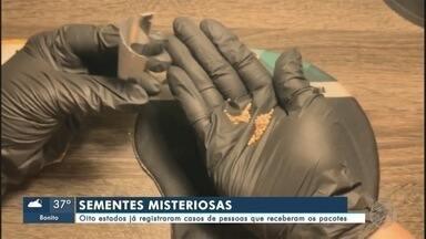 8 estados já registraram casos de pessoas que receberam pacotes com sementes misteriosas - Ministra diz que produto vem de três países
