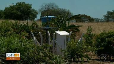 Projeto da Codevasf instala poços que funcionam com a energia solar - Com ajuda do sol, o Sertão está vencendo as dificuldades da seca.
