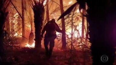 Fogo volta atingir a Serra do Amolar, no Pantanal de MS - Os incêndios no Pantanal voltam a atingir áreas que já tinham sido queimadas este ano. E o trabalho das equipes que combatem o fogo não para nem durante a noite.