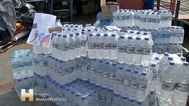 Doações para brigadistas e animais - Voluntários entregam água e comida para brigadistas que trabalham no combate ao fogo no Pantanal. Animais, que sofrem com a seca, receberam alimentos