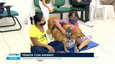 Terapia com animais é alternativa - Cães ajudam no desenvolvimento físico e social