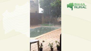 Chuva de granizo é registrada em diferentes regiões da Bahia - No município de Mundo Novo, sertão baiano, o fenómeno ocorreu na última semana.